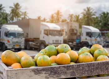 freight produce season